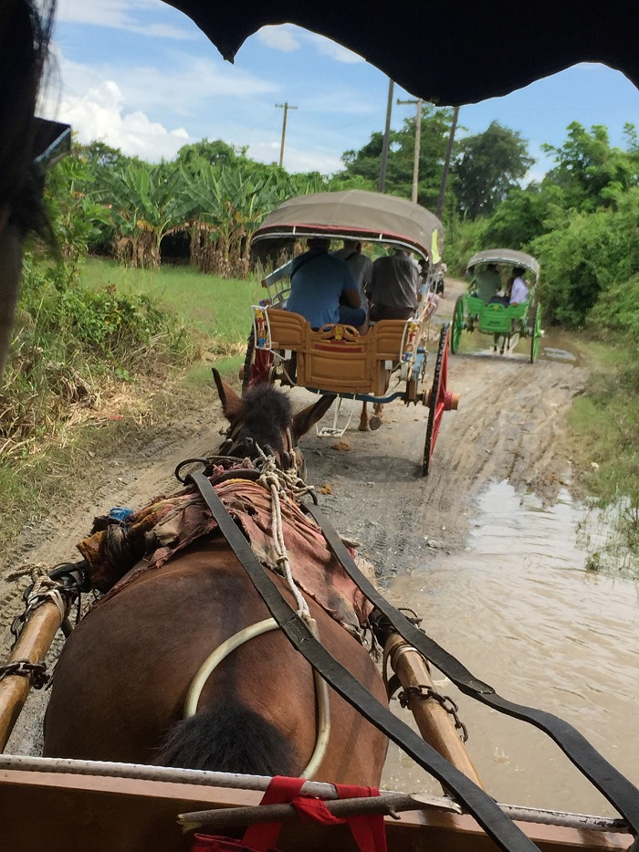 A fascinating horse cart to the ancient ruins of Inwa